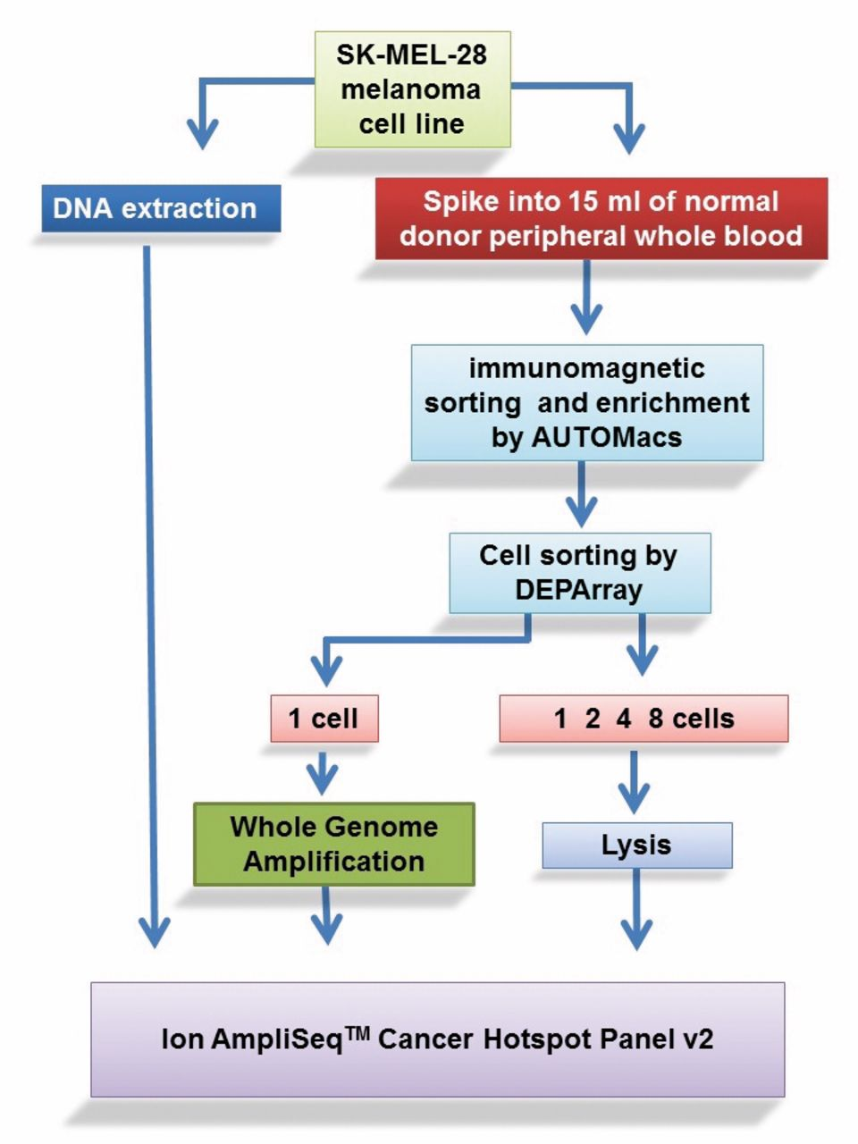 Next-generation Sequencing (NGS) Analysis on Single Circulating